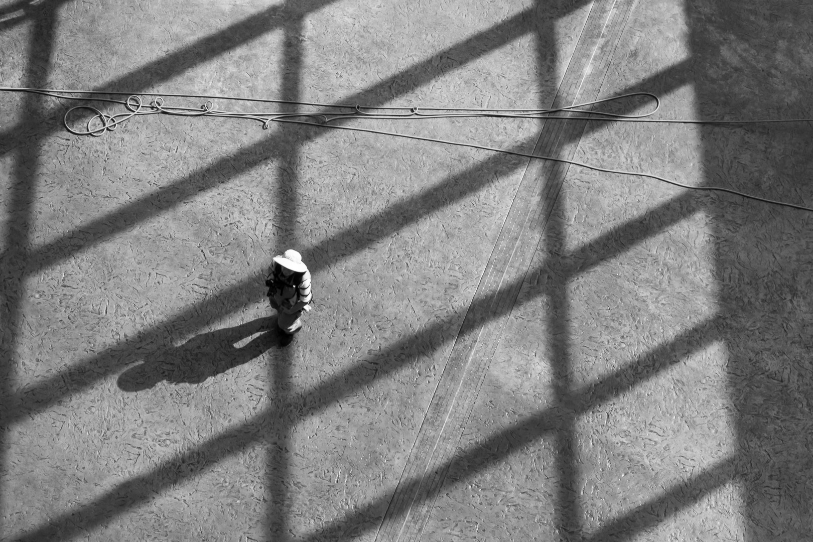lost in lines