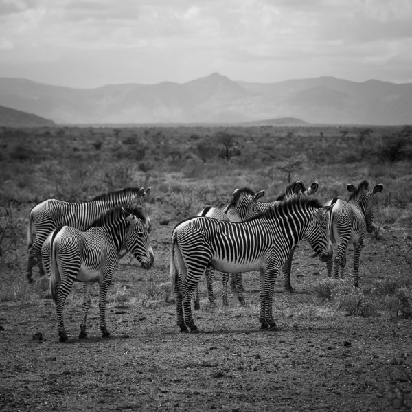 Kenia-119-PA180972