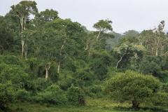 Kenia-197-PA231686