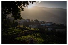 Madeira2018-002-P6220116